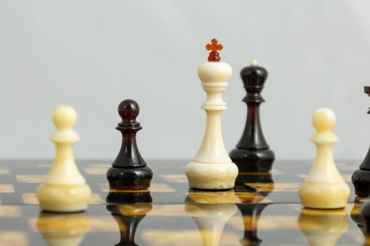Шахматы «Флора»